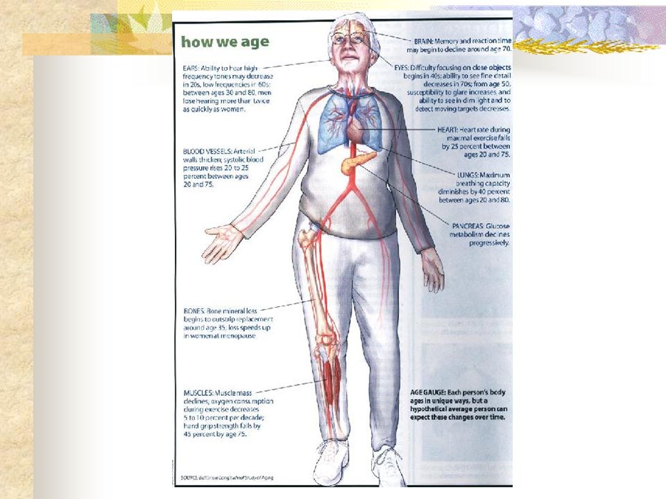 Factors associated with long life and healthy - diet - exercise - environment - social activity