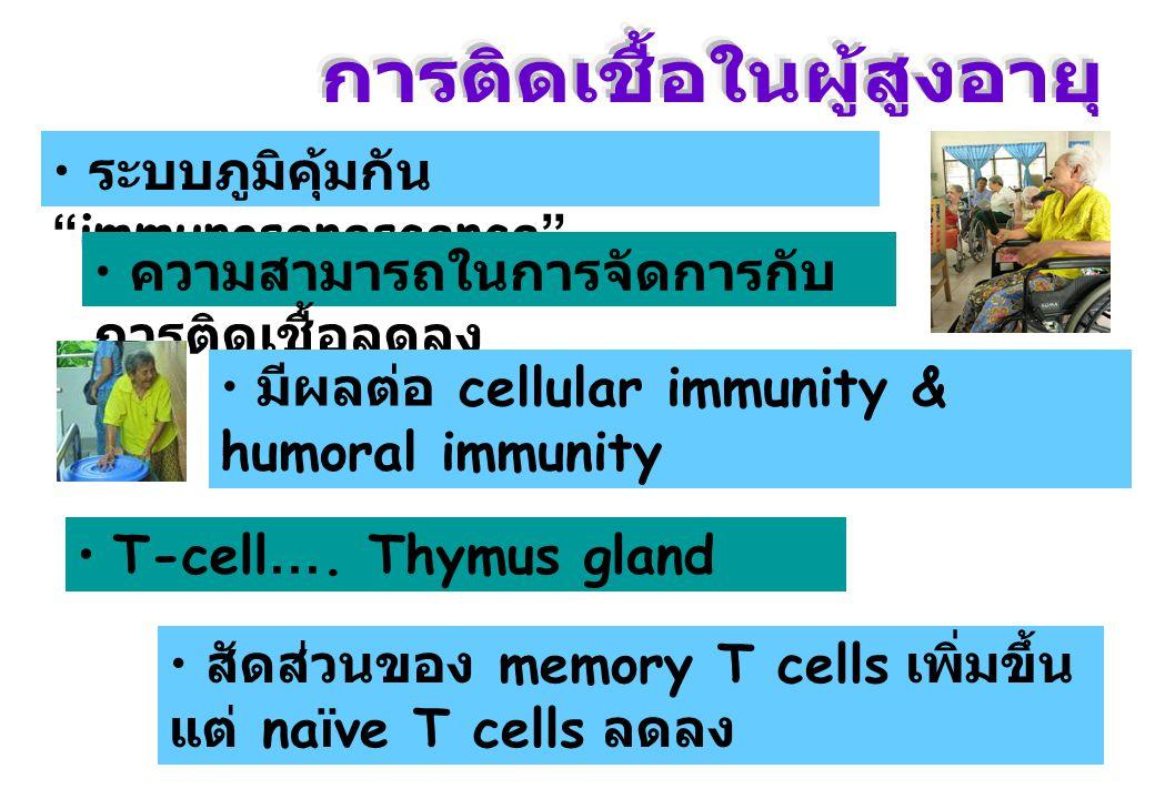 """ระบบภูมิคุ้มกัน """" immunosenescence """" ความสามารถในการจัดการกับ การติดเชื้อลดลง มีผลต่อ cellular immunity & humoral immunity T-cell …. Thymus gland สัดส"""