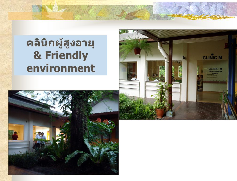 บทบาทของพยาบาล Referral Regional Geriatric Centre