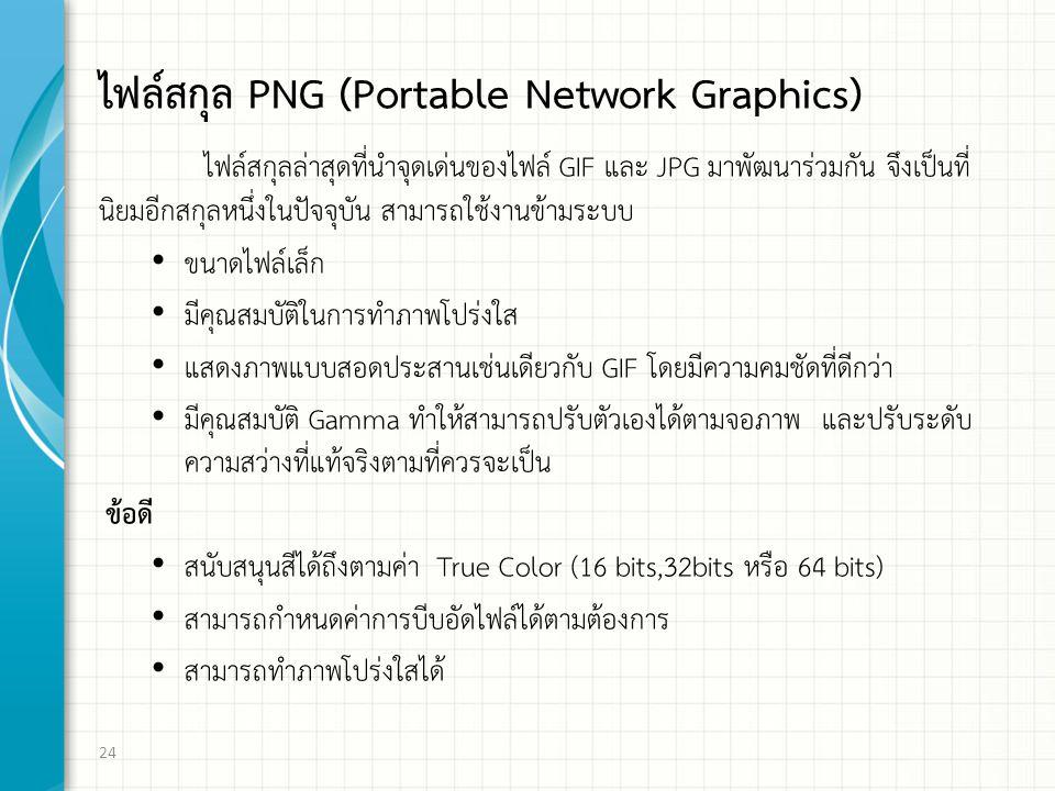 ไฟล์สกุล PNG (Portable Network Graphics) ไฟล์สกุลล่าสุดที่นำจุดเด่นของไฟล์ GIF และ JPG มาพัฒนาร่วมกัน จึงเป็นที่ นิยมอีกสกุลหนึ่งในปัจจุบัน สามารถใช้งานข้ามระบบ ขนาดไฟล์เล็ก มีคุณสมบัติในการทำภาพโปร่งใส แสดงภาพแบบสอดประสานเช่นเดียวกับ GIF โดยมีความคมชัดที่ดีกว่า มีคุณสมบัติ Gamma ทำให้สามารถปรับตัวเองได้ตามจอภาพ และปรับระดับ ความสว่างที่แท้จริงตามที่ควรจะเป็น ข้อดี สนับสนุนสีได้ถึงตามค่า True Color (16 bits,32bits หรือ 64 bits) สามารถกำหนดค่าการบีบอัดไฟล์ได้ตามต้องการ สามารถทำภาพโปร่งใสได้ 24