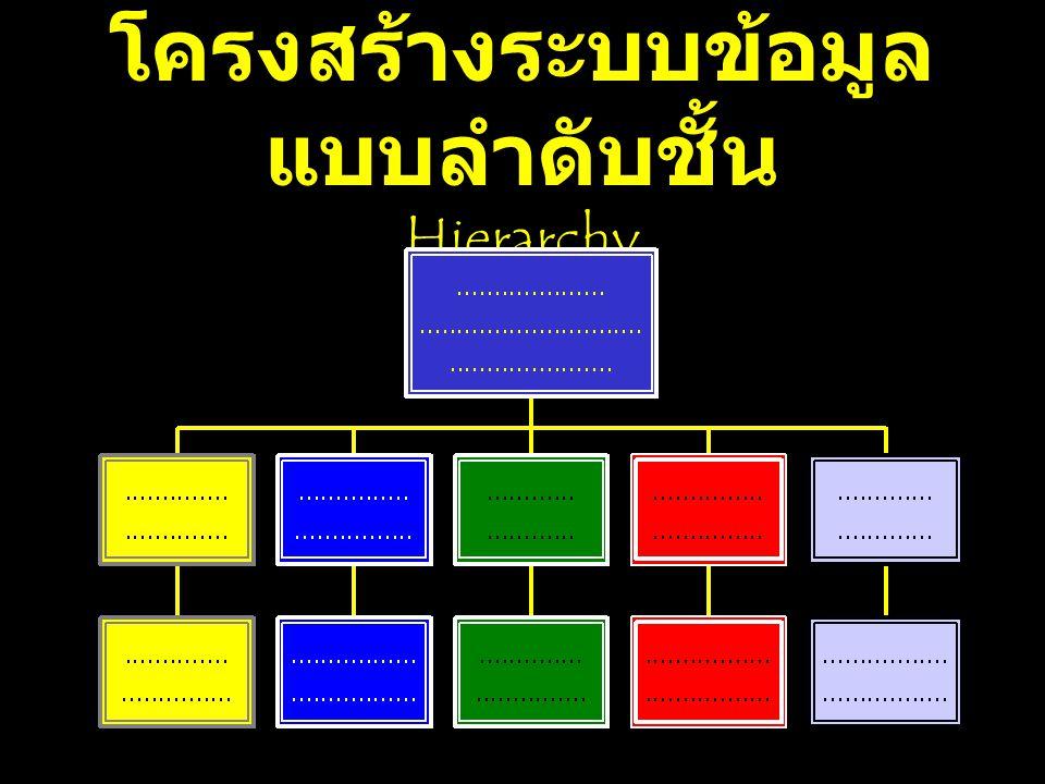 โครงสร้างระบบข้อมูล แบบลำดับชั้น Hierarchy