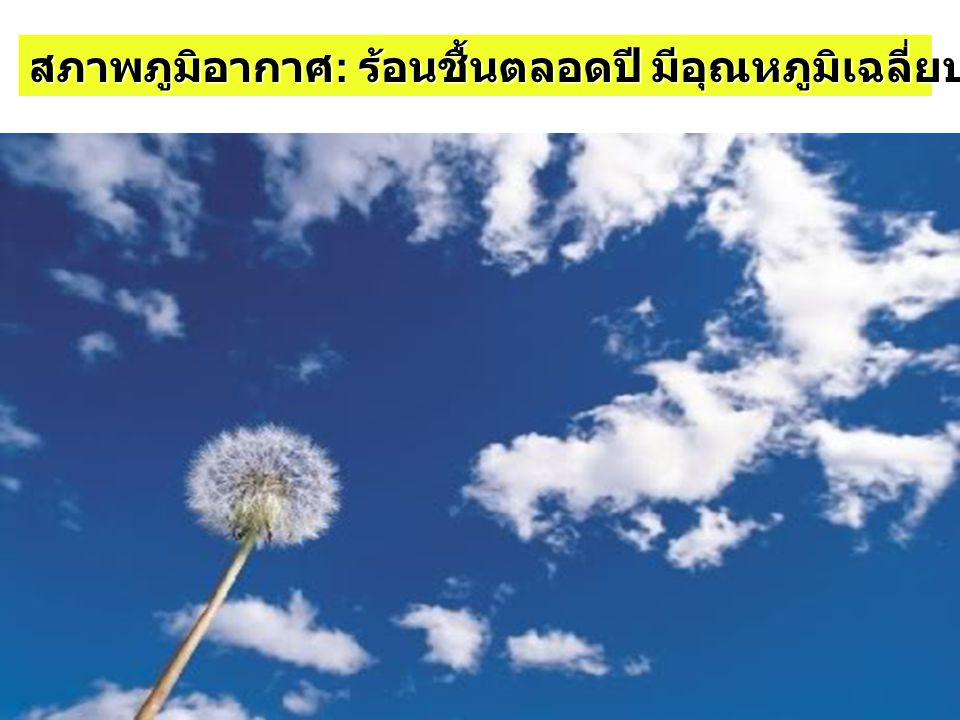 สภาพภูมิอากาศ : ร้อนชื้นตลอดปี มีอุณหภูมิเฉลี่ยประมาณ 28 องศาเซลเซียส