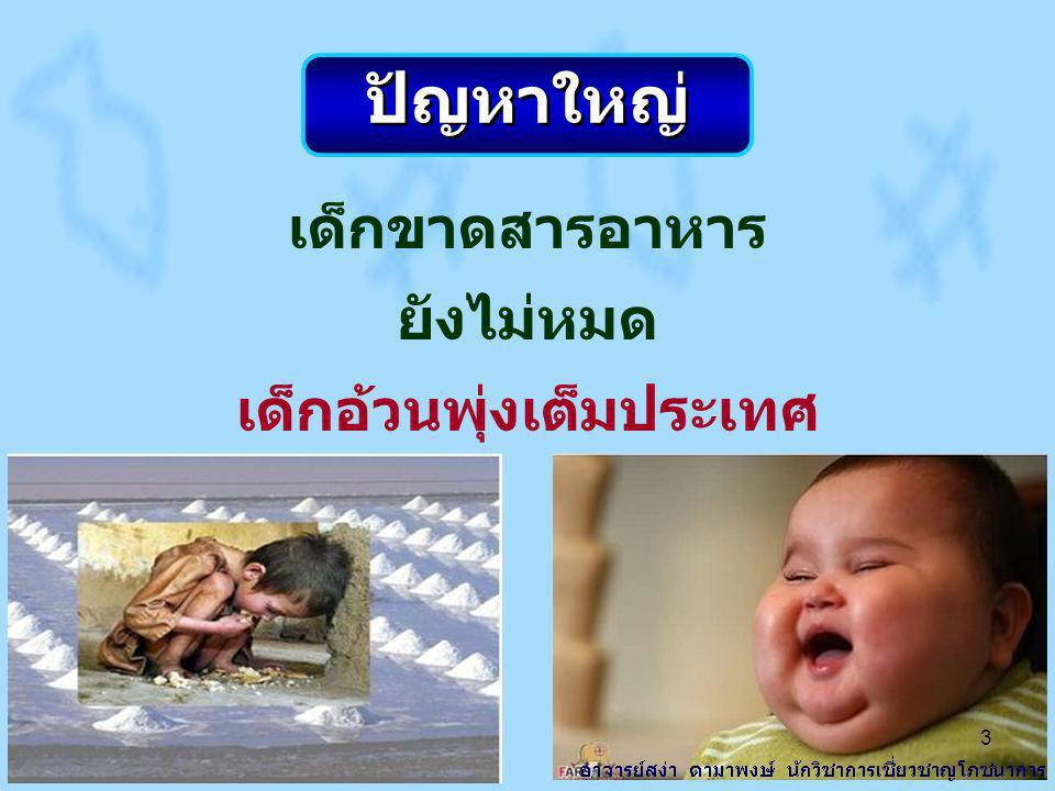 เด็กไทยวัยเรียน ร้อยละ 49.6 กินขนมกรุบกรอบประจำ ห่างกัน 3 ปี กินเพิ่ม 2 เท่า 14