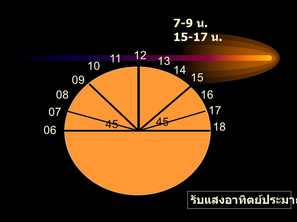 45 12 06 07 08 09 10 11 7-9 น. 15-17 น. 13 14 15 16 17 18 45 รับแสงอาทิตย์ประมาณ 30 นาที