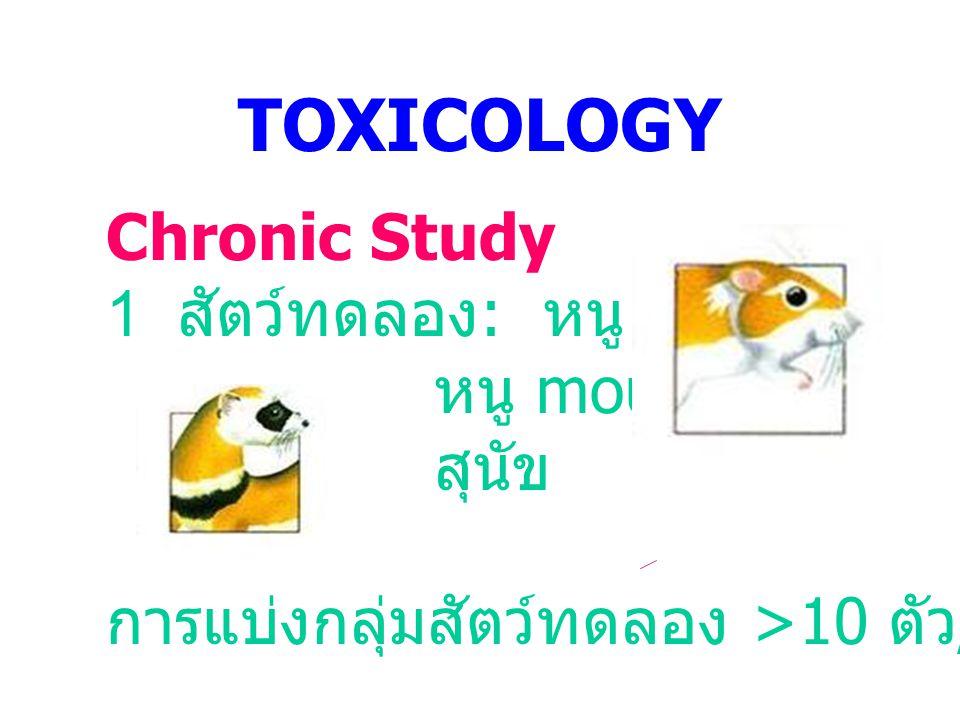 TOXICOLOGY Chronic Study 1 สัตว์ทดลอง : หนู rat หนู mouse สุนัข การแบ่งกลุ่มสัตว์ทดลอง >10 ตัว / กลุ่ม