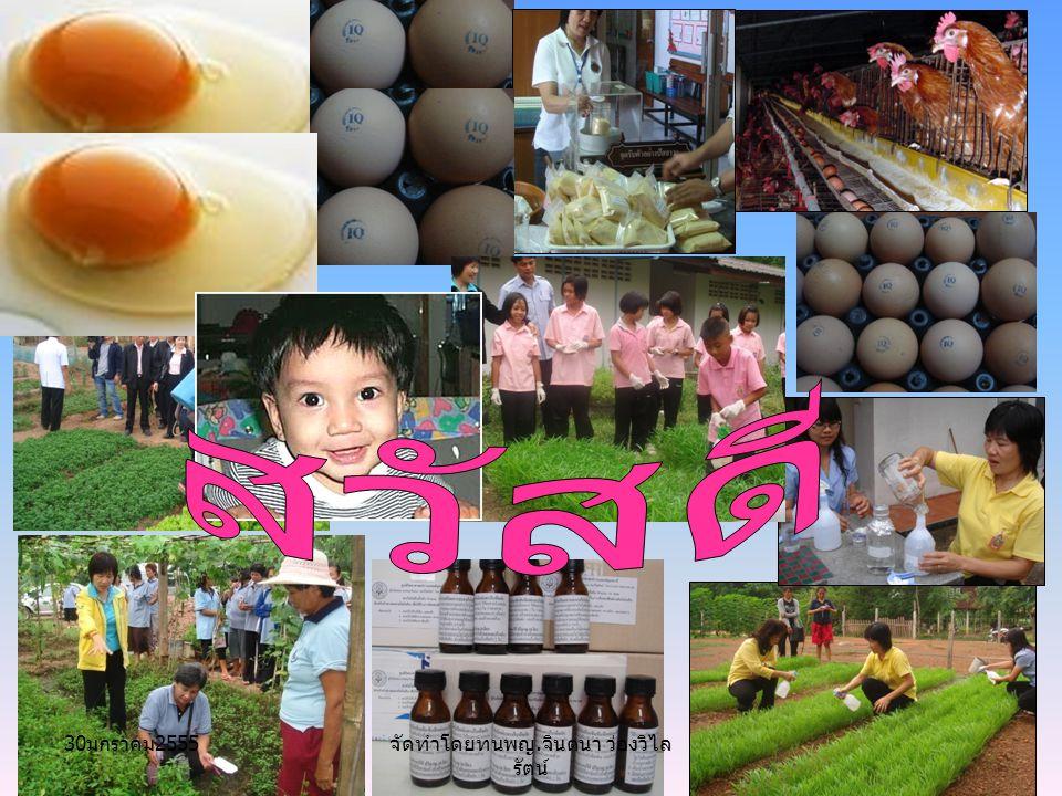 จัดทำโดยทนพญ. จินตนา ว่องวิไล รัตน์ 30 มกราคม 2555
