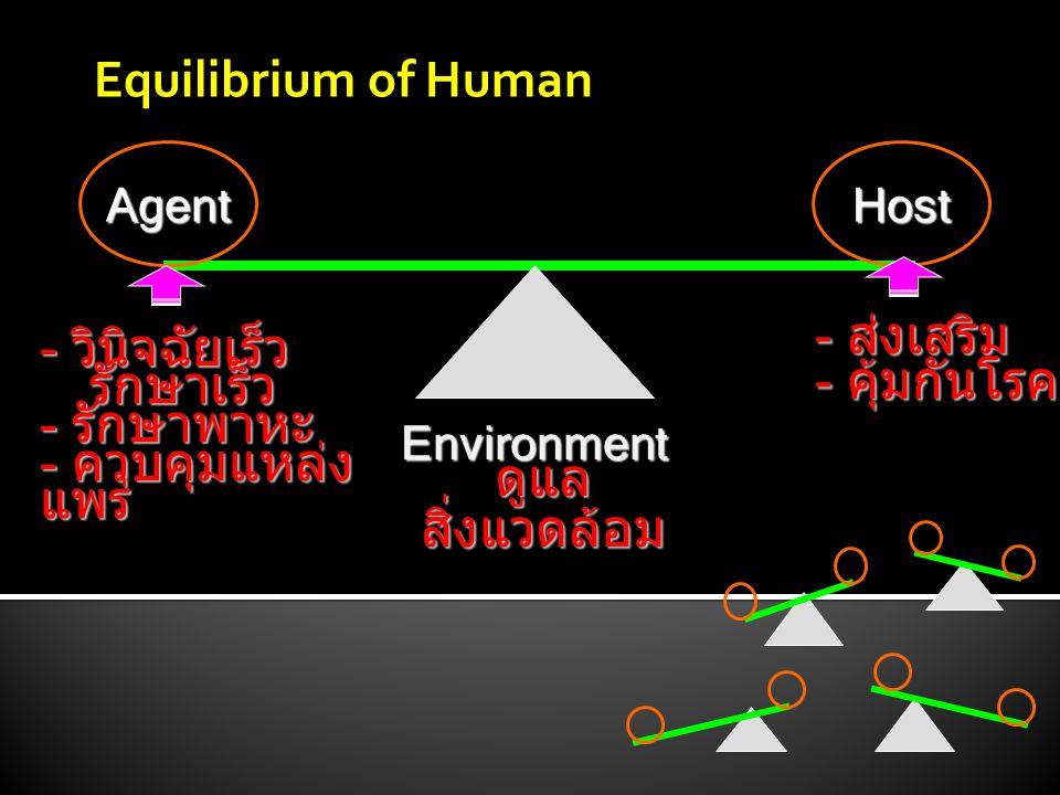 Agent - วินิจฉัยเร็ว รักษาเร็ว รักษาเร็ว - รักษาพาหะ - ควบคุมแหล่ง แพร่ ดูแลสิ่งแวดล้อม Host - ส่งเสริม - คุ้มกันโรค Environment Equilibrium of Human