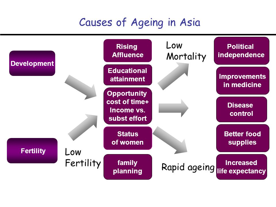 Development Fertility Causes of Ageing in Asia Rising Affluence Status of women Educational attainment Opportunity cost of time+ Income vs.