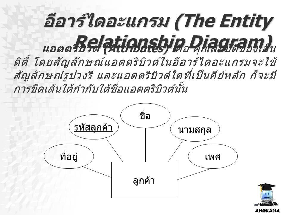 อีอาร์ไดอะแกรม (The Entity Relationship Diagram) แอตตริบิวต์ (Attributes) คือ คุณสมบัติของเอ็น ติตี้ โดยสัญลักษณ์แอตตริบิวต์ในอีอาร์ไดอะแกรมจะใช้ สัญล