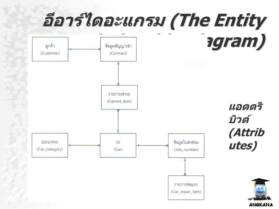 อีอาร์ไดอะแกรม (The Entity Relationship Diagram) แอตตริ บิวต์ (Attrib utes)