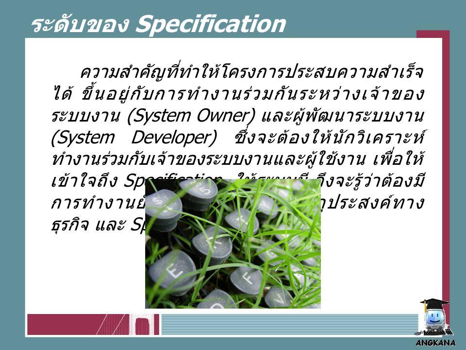 ระดับของ Specification ความสำคัญที่ทำให้โครงการประสบความสำเร็จ ได้ ขึ้นอยู่กับการทำงานร่วมกันระหว่างเจ้าของ ระบบงาน (System Owner) และผู้พัฒนาระบบงาน (System Developer) ซึ่งจะต้องให้นักวิเคราะห์ ทำงานร่วมกับเจ้าของระบบงานและผู้ใช้งาน เพื่อให้ เข้าใจถึง Specification ให้ระบบมี จึงจะรู้ว่าต้องมี การทำงานยังไง เพื่อให้ตรงกับวัตถุประสงค์ทาง ธุรกิจ และ Specification ของผู้ใช้