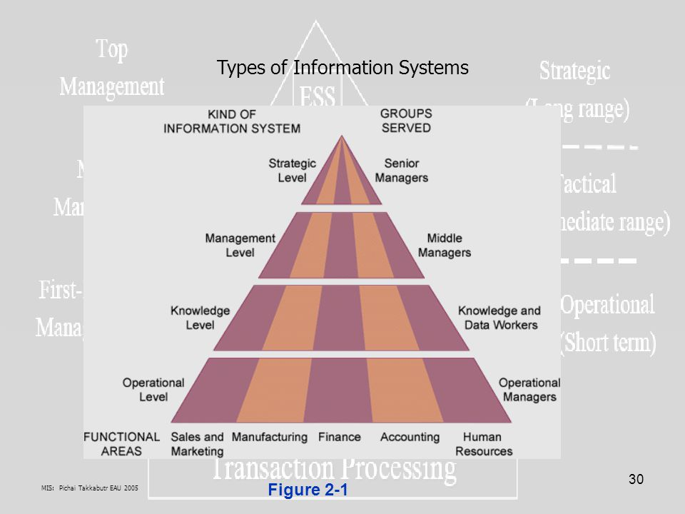 MIS: Pichai Takkabutr EAU 2005 30 Figure 2-1 Types of Information Systems