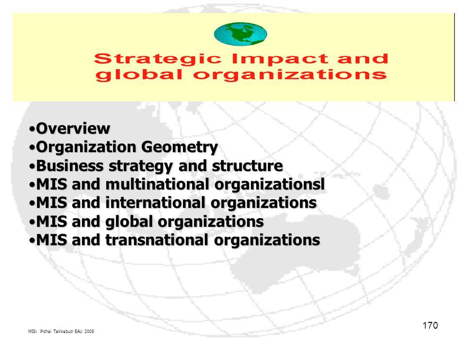 MIS: Pichai Takkabutr EAU 2005 170 OverviewOverview Organization GeometryOrganization Geometry Business strategy and structureBusiness strategy and st