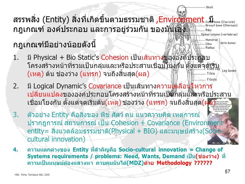 MIS: Pichai Takkabutr EAU 2005 57 สรรพสิ่ง (Entity) สิ่งที่เกิดขึ้นตามธรรมชาติ,Environment มี กฎเกณฑ์ องค์ประกอบ และการอยู่ร่วมกัน ของมันเอง กฎเกณฑ์มี