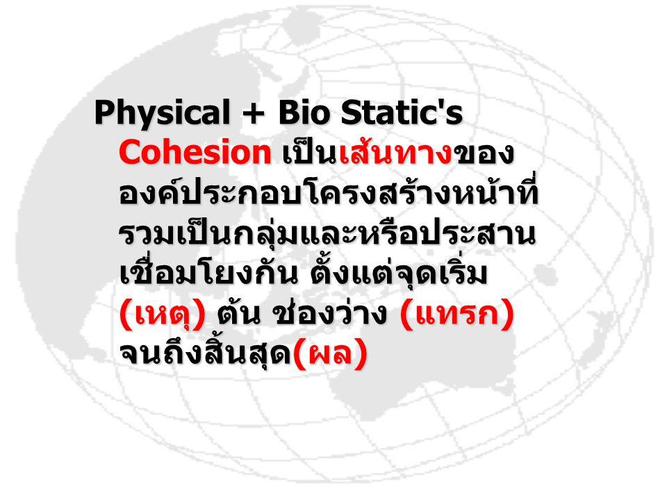 Physical + Bio Static's Cohesion เป็นเส้นทางของ องค์ประกอบโครงสร้างหน้าที่ รวมเป็นกลุ่มและหรือประสาน เชื่อมโยงกัน ตั้งแต่จุดเริ่ม (เหตุ) ต้น ช่องว่าง