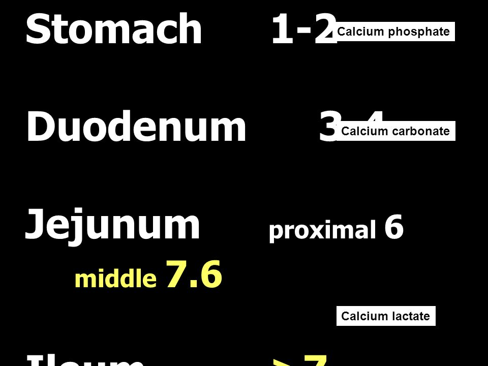 Stomach1-2 Duodenum3-4 Jejunum proximal 6 middle 7.6 Ileum>7 Calcium phosphate Calcium carbonate Calcium lactate
