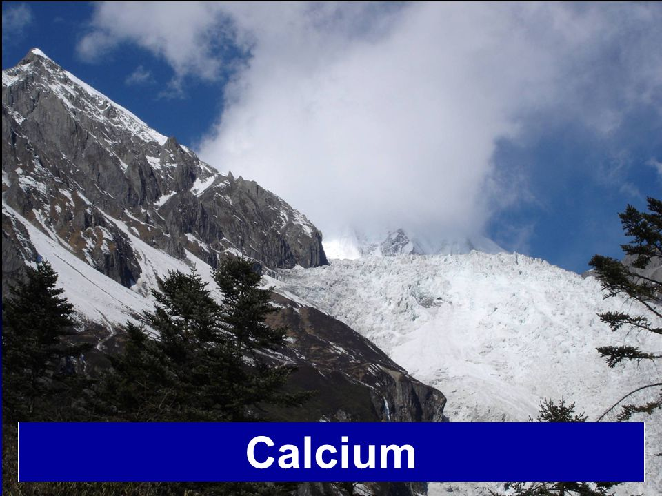 Calcium is the fifth most abundant chemical element in the human body Element% of total atoms H O C N Ca P Cl K S Na Mg 63 25.5 9.5 1.4 0.31 0.22 0.08 0.06 0.05 0.03 0.01 Elemental Composition of the Human Body Lehninger, Biochemistry, 2 nd ed., 1975