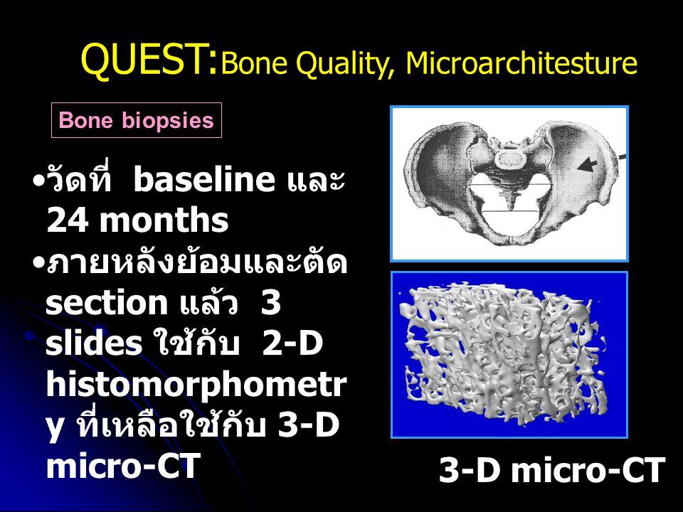 QUEST: Bone Quality, Microarchitesture Bone biopsies 3-D micro-CT วัดที่ baseline และ 24 months ภายหลังย้อมและตัด section แล้ว 3 slides ใช้กับ 2-D his