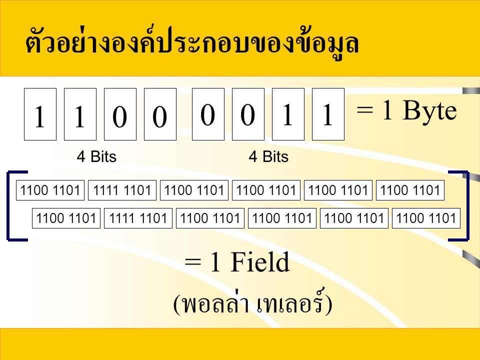 ตัวอย่างองค์ประกอบของข้อมูล 1100 4 Bits 0011 = 1 Byte 1100 11011111 11011100 1101 1111 11011100 1101 = 1 Field (พอลล่า เทเลอร์)