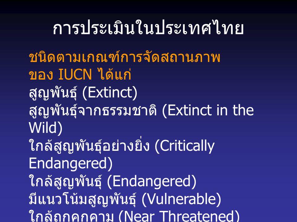 การประเมินในประเทศไทย ชนิดตามเกณฑ์การจัดสถานภาพ ของ IUCN ได้แก่ สูญพันธุ์ (Extinct) สูญพันธุ์จากธรรมชาติ (Extinct in the Wild) ใกล้สูญพันธุ์อย่างยิ่ง
