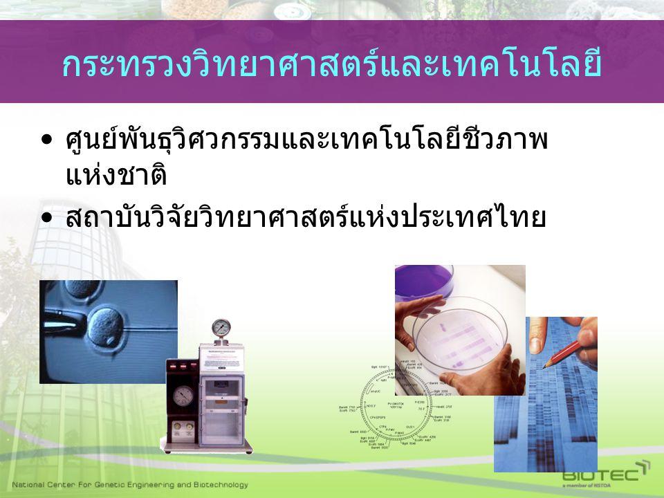 กระทรวงวิทยาศาสตร์และเทคโนโลยี ศูนย์พันธุวิศวกรรมและเทคโนโลยีชีวภาพ แห่งชาติ สถาบันวิจัยวิทยาศาสตร์แห่งประเทศไทย