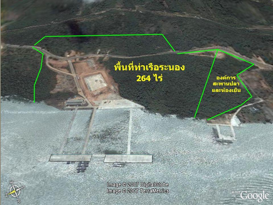พื้นที่ท่าเรือระนอง 264 ไร่ องค์การ สะพานปลา และห้องเย็น