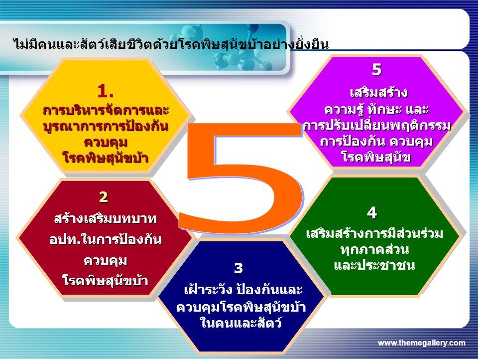 www.themegallery.com 1.การบริหารจัดการและบูรณาการการป้องกันควบคุมโรคพิษสุนัขบ้า การบริหารจัดการและบูรณาการการป้องกันควบคุมโรคพิษสุนัขบ้า 5 เสริมสร้าง เสริมสร้าง ความรู้ ทักษะ และ การปรับเปลี่ยนพฤติกรรม การป้องกัน ควบคุม โรคพิษสุนัข5 เสริมสร้าง เสริมสร้าง ความรู้ ทักษะ และ การปรับเปลี่ยนพฤติกรรม การป้องกัน ควบคุม โรคพิษสุนัข 4 เสริมสร้างการมีส่วนร่วม ทุกภาคส่วน และประชาชน4 เสริมสร้างการมีส่วนร่วม ทุกภาคส่วน และประชาชน 3 เฝ้าระวัง ป้องกันและ ควบคุมโรคพิษสุนัขบ้า ในคนและสัตว์3 เฝ้าระวัง ป้องกันและ ควบคุมโรคพิษสุนัขบ้า ในคนและสัตว์ 2สร้างเสริมบทบาทอปท.ในการป้องกันควบคุมโรคพิษสุนัขบ้า2สร้างเสริมบทบาทอปท.ในการป้องกันควบคุมโรคพิษสุนัขบ้า ไม่มีคนและสัตว์เสียชีวิตด้วยโรคพิษสุนัขบ้าอย่างยั่งยืน