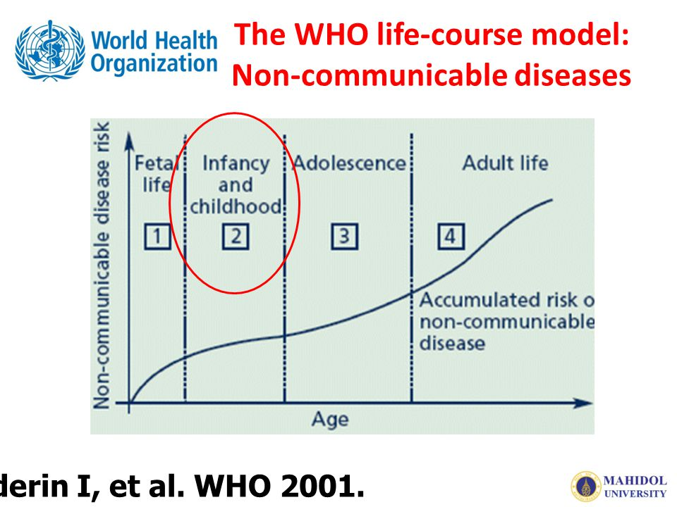 The WHO life-course model: Non-communicable diseases Aboderin I, et al. WHO 2001.