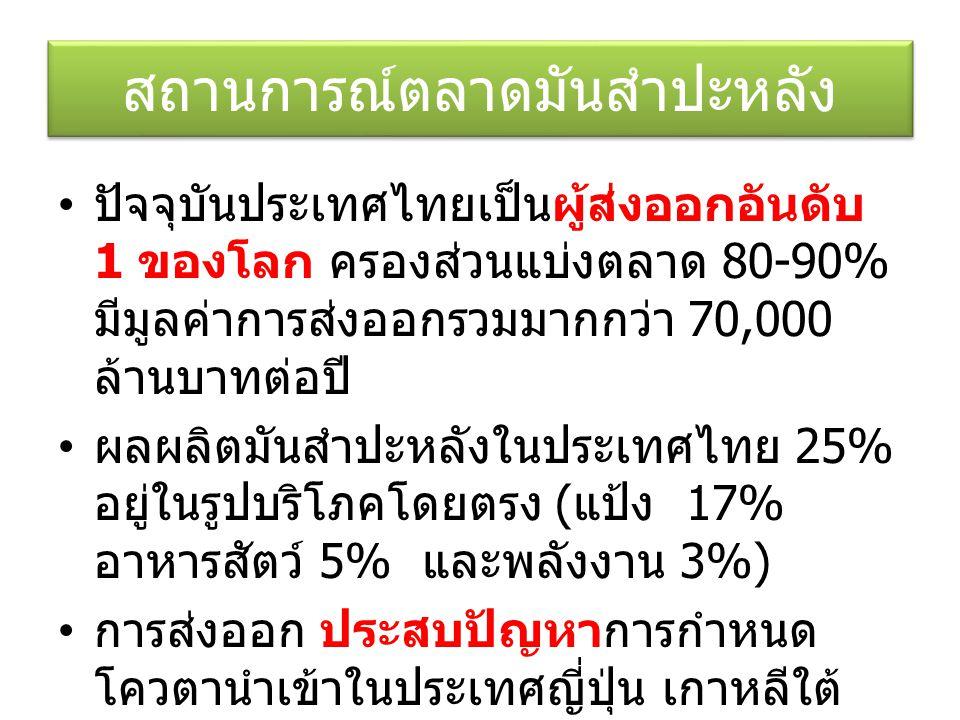 สถานการณ์ตลาดมันสำปะหลัง ปัจจุบันประเทศไทยเป็นผู้ส่งออกอันดับ 1 ของโลก ครองส่วนแบ่งตลาด 80-90% มีมูลค่าการส่งออกรวมมากกว่า 70,000 ล้านบาทต่อปี ผลผลิตมันสำปะหลังในประเทศไทย 25% อยู่ในรูปบริโภคโดยตรง ( แป้ง 17% อาหารสัตว์ 5% และพลังงาน 3%) การส่งออก ประสบปัญหาการกำหนด โควตานำเข้าในประเทศญี่ปุ่น เกาหลีใต้
