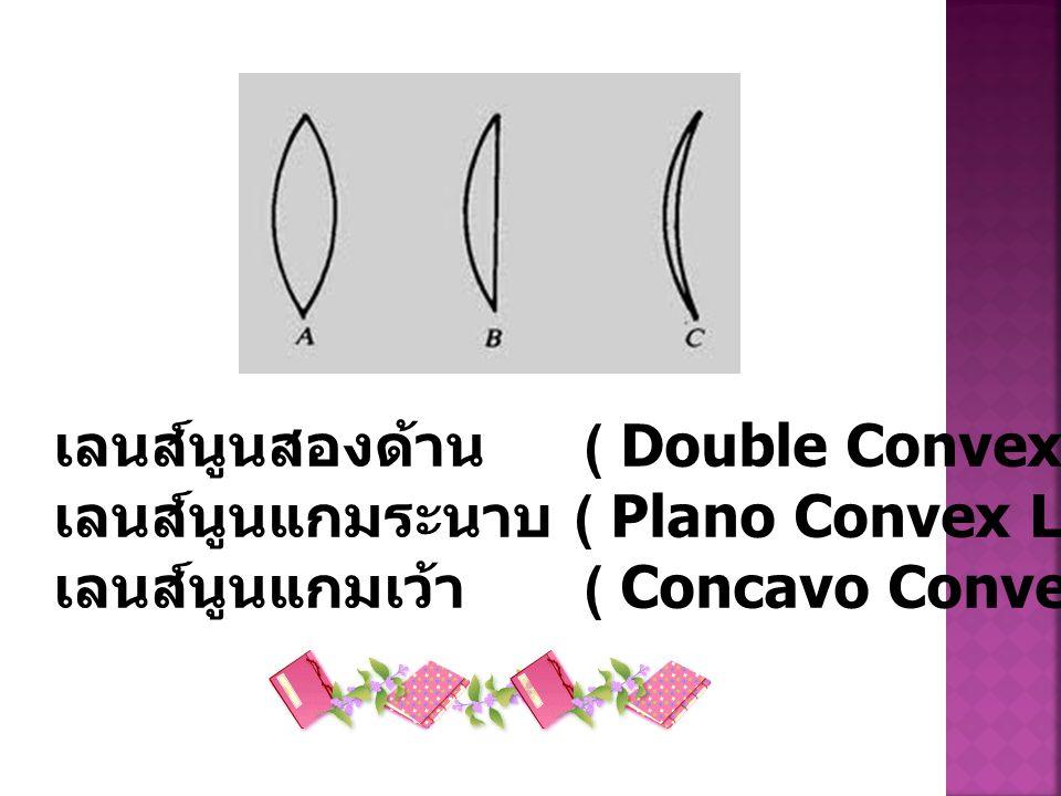 เลนส์นูนสองด้าน ( Double Convex Lens) ดังรูป a เลนส์นูนแกมระนาบ ( Plano Convex Lens) ดังรูป b เลนส์นูนแกมเว้า ( Concavo Convex Lens) ดังรูป c