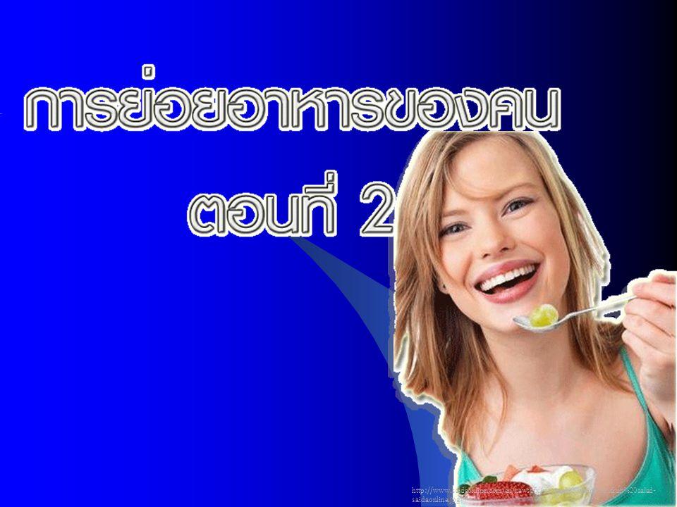http://www.saidaonline.com/en/newsgfx/woman%20eating%20fruit%20salad- saidaonline.jpg