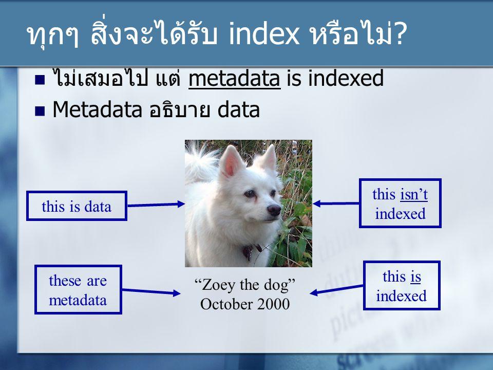 ทุกๆ สิ่งจะได้รับ index หรือไม่.