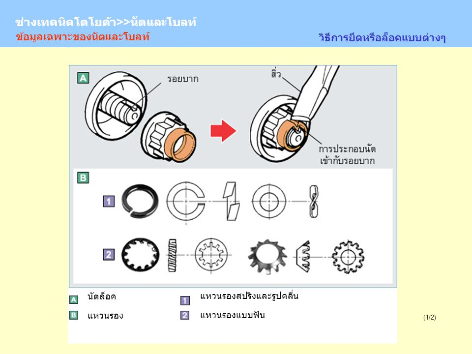 TOYOTA Technician >> Nuts and Bolts (2/2) Castle nut ข้อมูลเฉพาะของนัตและโบลท์ วิธีการยึดหรือล็อคแบบต่างๆ ข้อควรระวังของการใช้พินล็อค สลักหัวผ่า แผ่นล็อค นัตหัวผ่า ช่างเทคนิคโตโยต้า>>นัตและโบลท์
