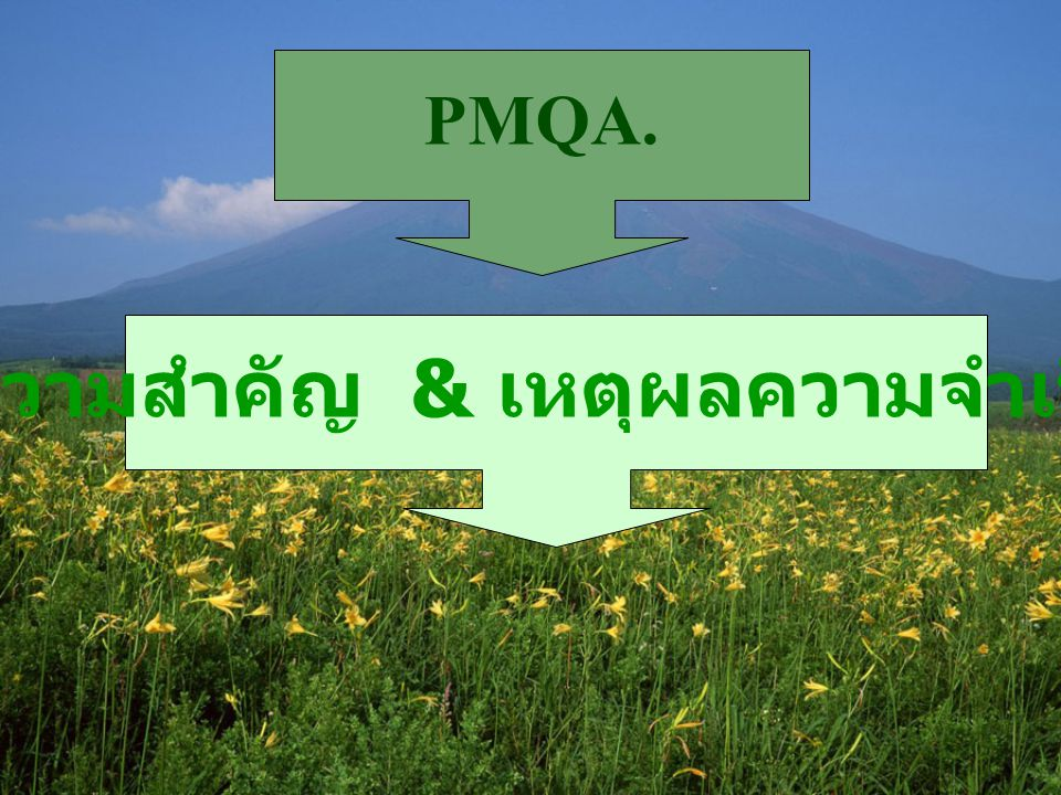 PMQA. ความสำคัญ & เหตุผลความจำเป็น