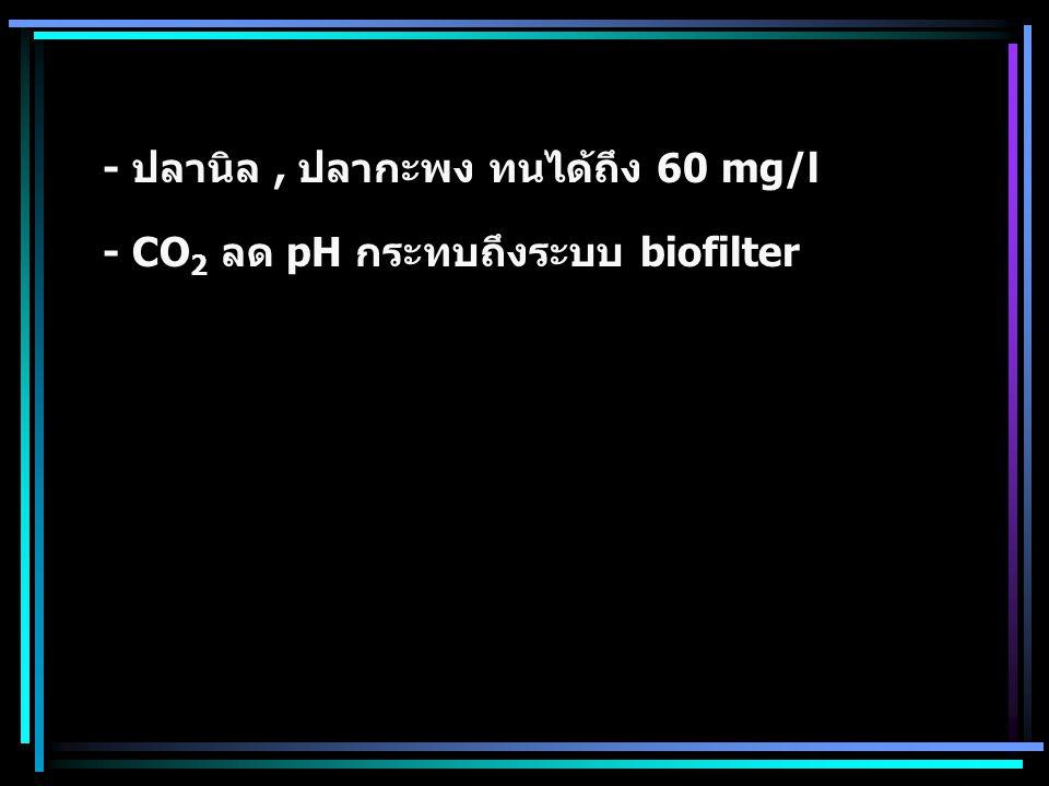 - ปลานิล, ปลากะพง ทนได้ถึง 60 mg/l - CO 2 ลด pH กระทบถึงระบบ biofilter