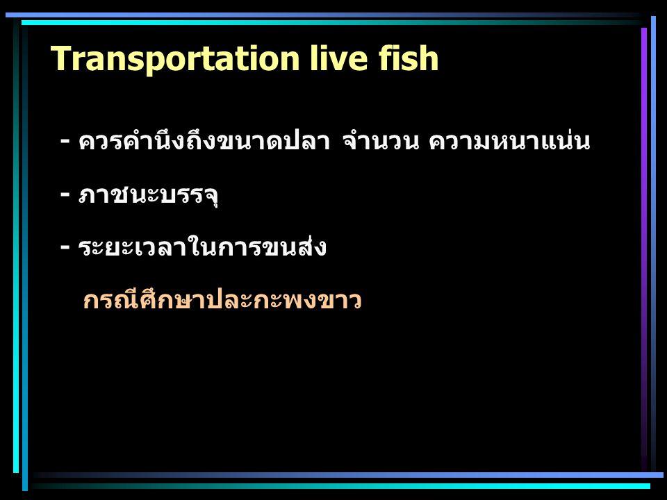 Transportation live fish - ควรคำนึงถึงขนาดปลา จำนวน ความหนาแน่น - ภาชนะบรรจุ - ระยะเวลาในการขนส่ง กรณีศึกษาปละกะพงขาว