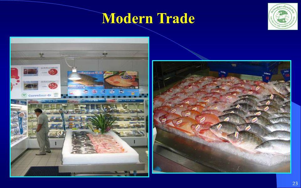 Modern Trade 23