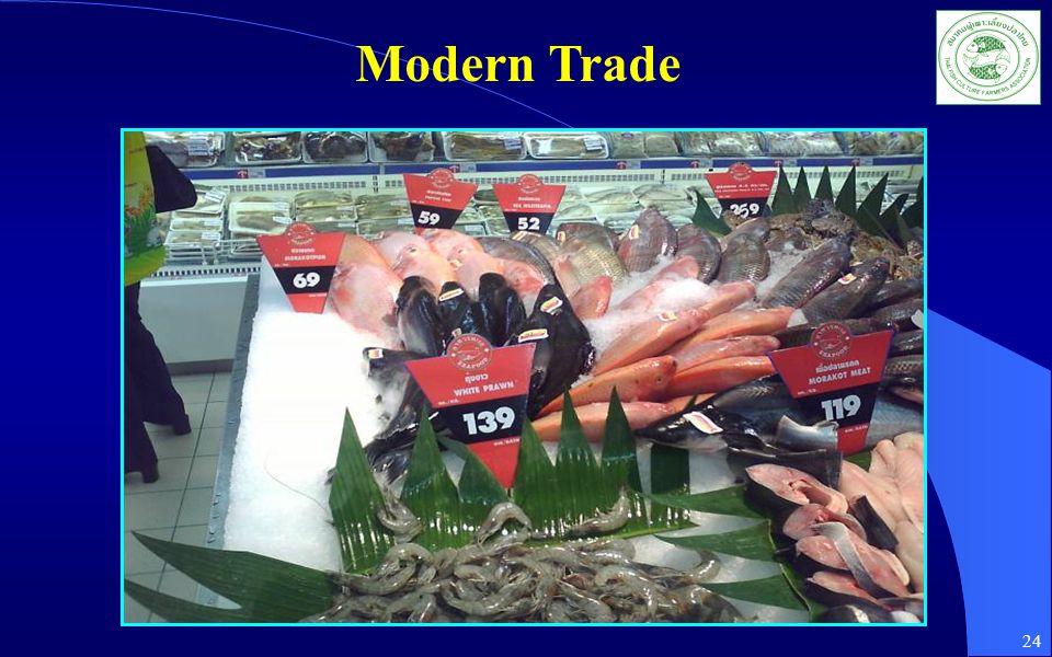 Modern Trade 24