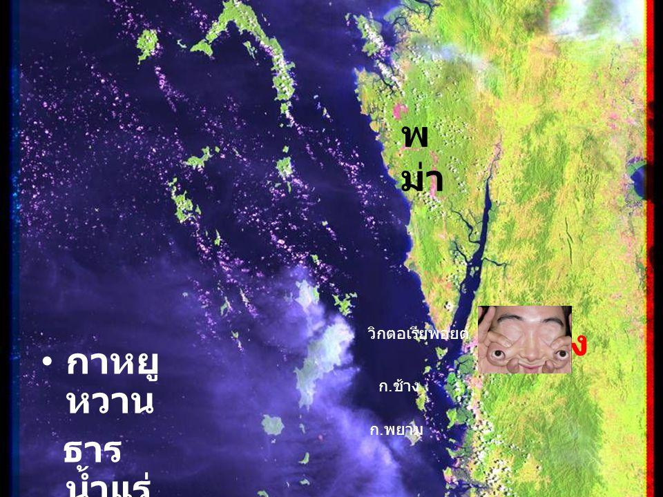 ระนอง กาหยู หวาน ธาร น้ำแร่ บ่อน้ำ ร้อน วิกตอเรียพอยต์ ก. พยาม ก. ช้าง ระนอง พ ม่า