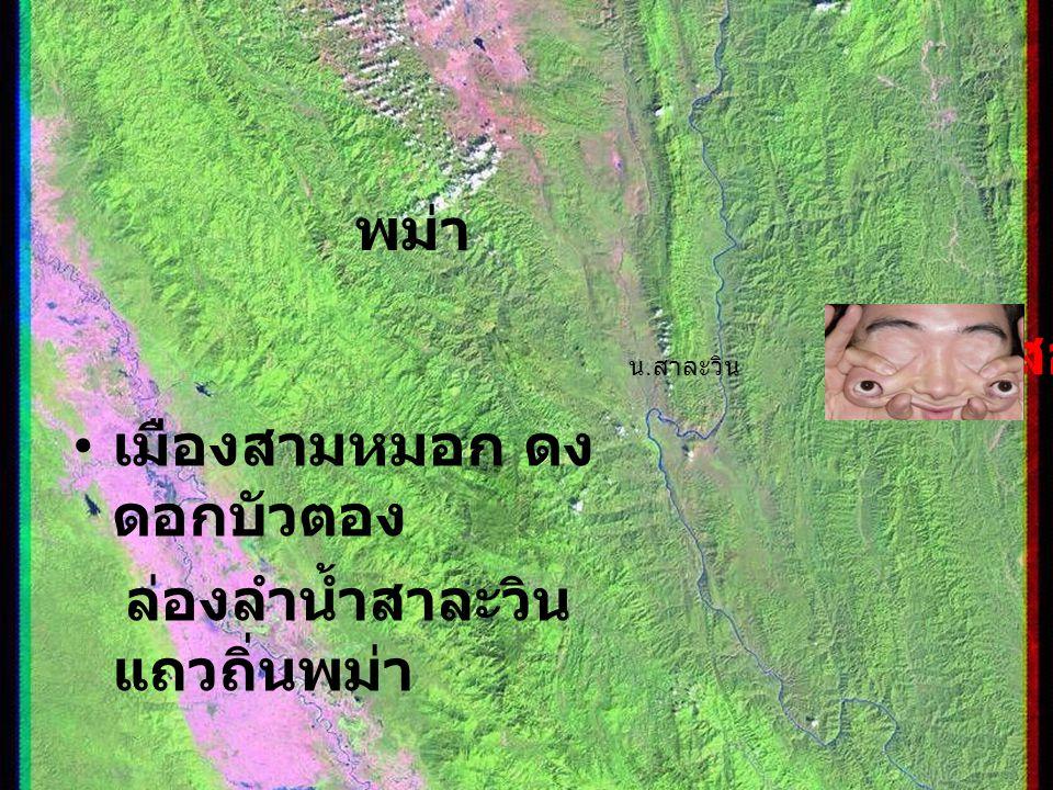 พม่า ( สาละวิน ) แม่ฮ่องสอน เมืองสามหมอก ดง ดอกบัวตอง ล่องลำน้ำสาละวิน แถวถิ่นพม่า แม่ฮ่องสอน พม่า น. สาละวิน