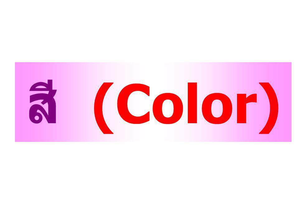 สี (Color)