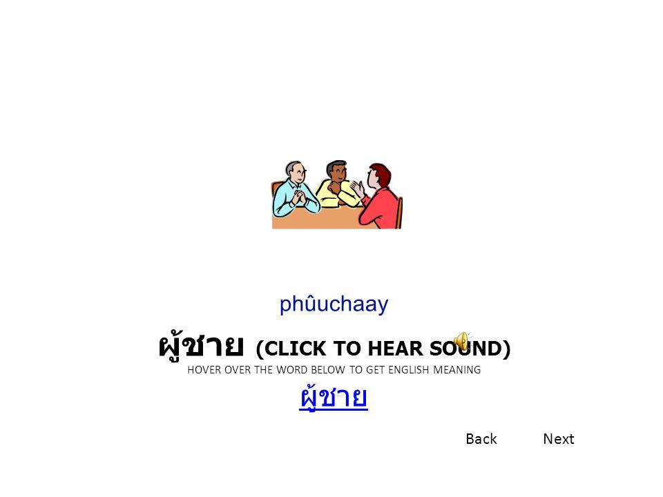 ผม (CLICK TO HEAR SOUND) HOVER OVER THE WORD BELOW TO GET ENGLISH MEANING ผม ผม phǒm BackNext