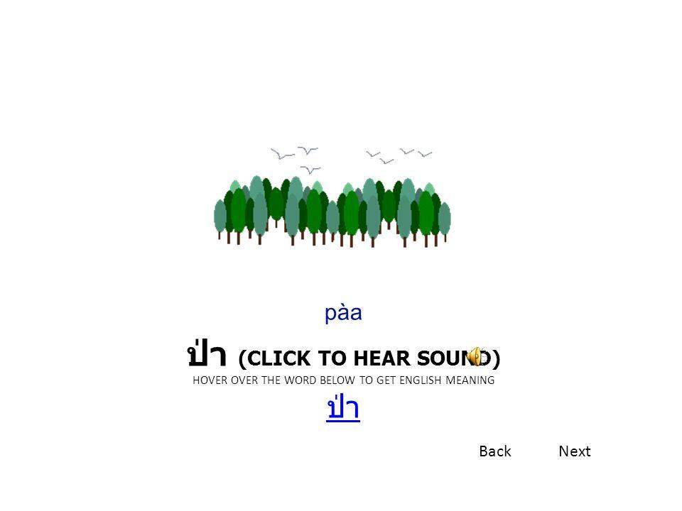 ป่า (CLICK TO HEAR SOUND) HOVER OVER THE WORD BELOW TO GET ENGLISH MEANING ป่า ป่า pàa BackNext