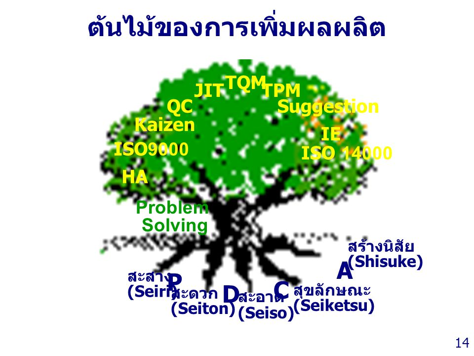 Thailand Productivity Institute 14 ต้นไม้ของการเพิ่มผลผลิต ISO9000 Kaizen QC JIT TQM TPM Suggestion IE ISO 14000 Problem Solving สะสาง (Seiri) สะดวก (