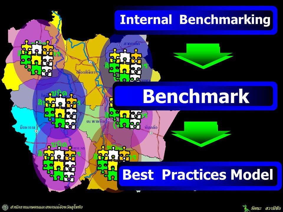 ชนิด สินค้าเกษตร (พืชผัก) ชนิด สินค้าเกษตร (ส้มโอ) ชนิด สินค้าเกษตร (ข้าว) Internal Benchmarking Benchmark Best Practices Model