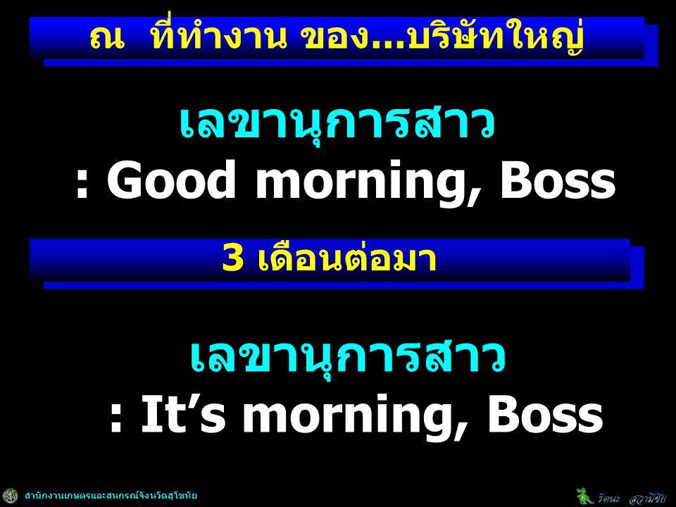 สำนักงานเกษตรและสหกรณ์จังหวัดสุโขทัย ณ ที่ทำงาน ของ...บริษัทใหญ่ 3 เดือนต่อมา เลขานุการสาว : Good morning, Boss เลขานุการสาว : It's morning, Boss