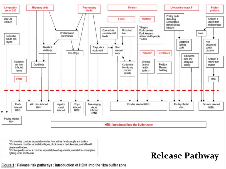 Expose Pathway