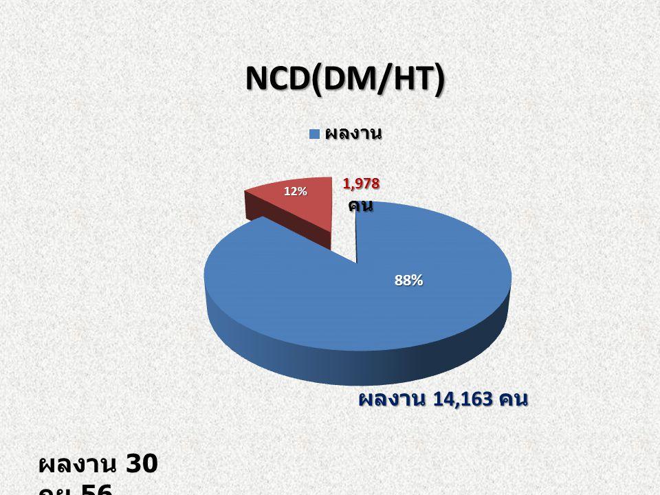 NCD(DM/HT) NCD(DM/HT) ผลงาน 30 กย.56 ผลงาน 14,163 คน
