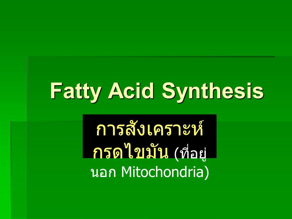 ปฏิกิริยาเริ่มต้นจาก Acetyl-CoA เปลี่ยนเป็น Malonyl-CoA โดยอาศัย Enzyme ชื่อ Acetyl-CoA carboxylase และมี Coenzyme ชื่อ Biotin Acetyl-CoAMalonyl-CoA ATP ADP + P i