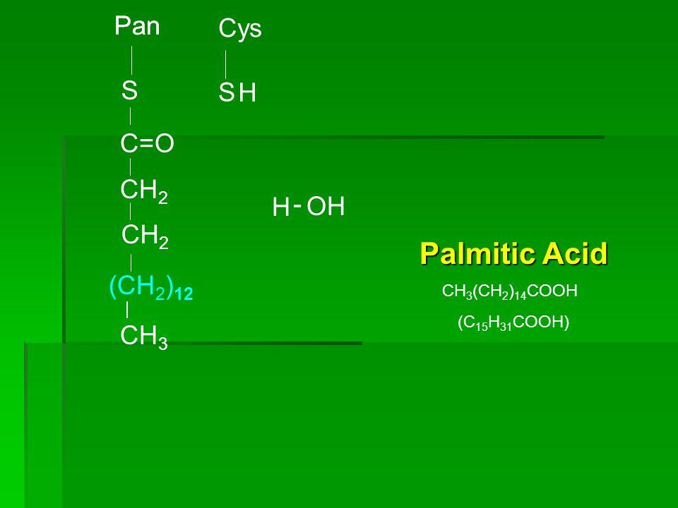 Pan S Cys S H CH 3 (CH 2 ) 12 C=O CH 2 OH H - Palmitic Acid CH 3 (CH 2 ) 14 COOH (C 15 H 31 COOH)